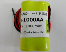 2N1000