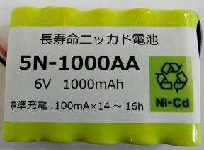 5N1000